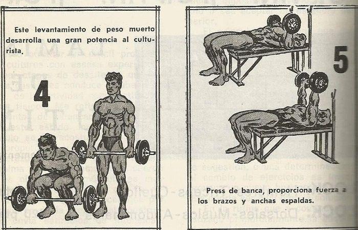 ejercicios culturista 2