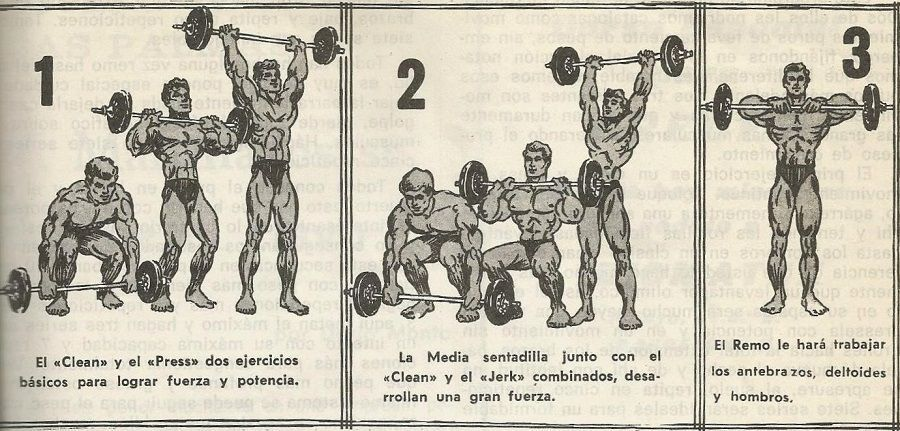 ejercicios culturista y powerlifting