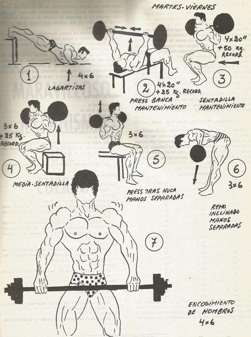 tabla ejercicios powerlifting